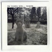 Bromide-The TroubleWith-2008